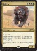 包囲サイ/Siege Rhino (マジック・オリジン 対戦キット)