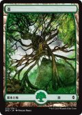森/Forest 【Ver.4】 (BFZ)