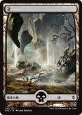 沼/Swamp 【Ver.3】 (BFZ)