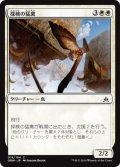 探検の猛禽/Expedition Raptor (OGW)