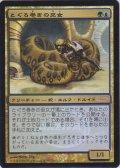 とぐろ巻きの巫女/Coiling Oracle (Arena)
