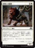 聖戦士の相棒/Cathar's Companion (SOI)
