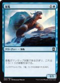 象亀/Giant Tortoise (EMA)