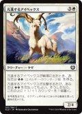 亢進するアイベックス/Thriving Ibex (KLD)