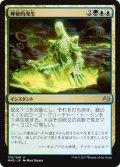 神秘的発生/Mystic Genesis (MM3)