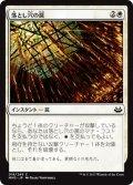 落とし穴の罠/Pitfall Trap (MM3)