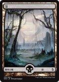 沼/Swamp (AKH)