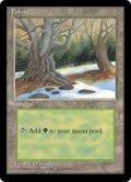 森/Forest【Ver.3】(ICE)