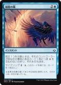 相殺の風/Countervailing Winds (HOU)