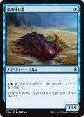 岸の守り手/Shore Keeper (XLN)