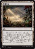 廃墟の地/Field of Ruin (XLN)
