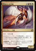 炎まといの天使/Firemane Angel (IMA)