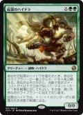 起源のハイドラ/Genesis Hydra (IMA)