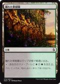 穢れた果樹園/Foul Orchard (AKH)