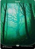 森/Forest (UST)