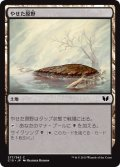 やせた原野/Barren Moor (C15)