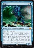 波使い/Master of Waves (DDT)