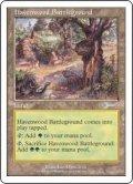 ヘイヴンウッドの古戦場/Havenwood Battleground (Beatdown)