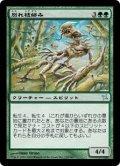 別れ枝絡み/Forked-Branch Garami (BOK)