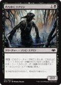 朽ちゆくゴブリン/Putrid Goblin (MH1)