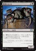 墓所のネズミ/Crypt Rats (MH1)