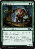 樹皮革のトロール/Barkhide Troll (M20)