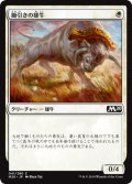 鋤引きの雄牛/Yoked Ox (M20)