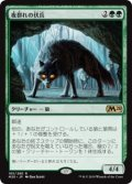 夜群れの伏兵/Nightpack Ambusher (Prerelease Card)