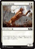 うろつくカラカル/Prowling Caracal (M20)