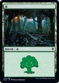 森/Forest 【Ver.2】 (ELD)