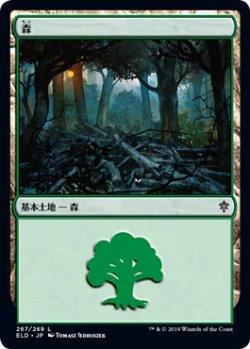 画像1: 森/Forest 【Ver.2】 (ELD)《Foil》