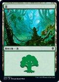 森/Forest 【Ver.1】 (ELD)