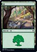 森/Forest 【Ver.3】 (ELD)