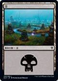 沼/Swamp 【Ver.3】 (ELD)