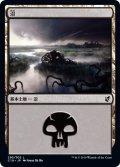 沼/Swamp 【Ver.2】 (C19)