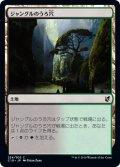 ジャングルのうろ穴/Jungle Hollow (C19)
