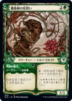 画像1: 薔薇棘の見習い/Rosethorn Acolyte (ELD)【ショーケース・フレーム】