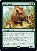 ネシアンの猪/Nessian Boar (THB)