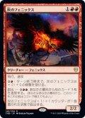 灰のフェニックス/Phoenix of Ash (THB)《Foil》