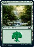 森/Forest 【Ver.2】 (UND)
