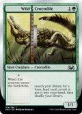 Wild | Crocodile (UND)
