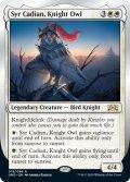 Syr Cadian, Knight Owl (UND)