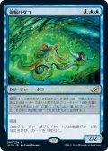 海駆けダコ/Sea-Dasher Octopus (IKO)