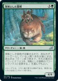 溌剌とした狼熊/Exuberant Wolfbear (IKO)