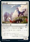 繁栄の狐/Flourishing Fox (IKO)