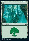 森/Forest 【Ver.2】 (IKO)