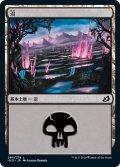 沼/Swamp 【Ver.1】 (IKO)