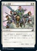揃った突撃/Coordinated Charge (IKO)