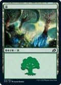 森/Forest 【Ver.1】 (IKO)