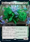 集めるもの、ウモーリ/Umori, the Collector (IKO)【拡張アート枠】